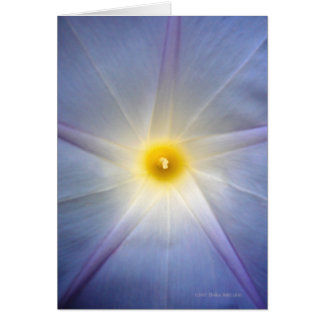 Morning Glory Heart Card