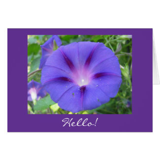 Morning Glory Hello! Card