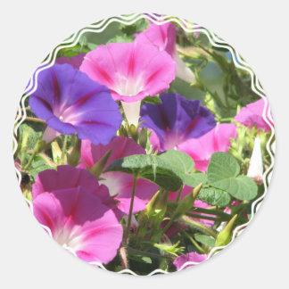 Morning Glory Vines Sticker