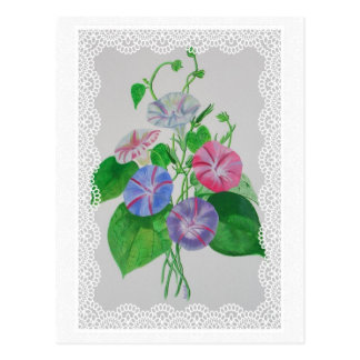 Morning Glory Vintage Bouquet Postcard