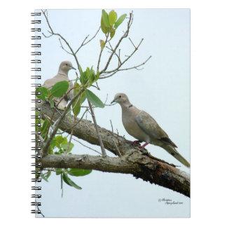 Morning gray doves Notebook