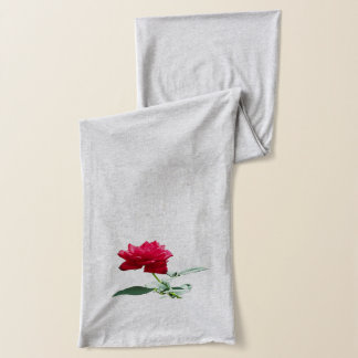 """Morning Greeting"" Single Red Rose Scarf"