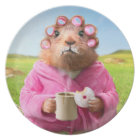 Morning Groundhog with Breakfast Doughnut and Plate