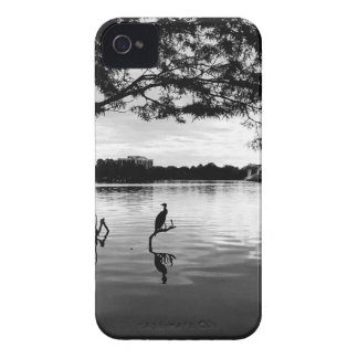 Morning Lake iPhone 4 Case-Mate Case