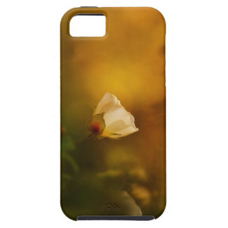 Morning light iPhone 5 cover