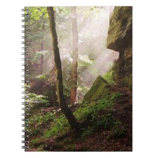 Morning Light Notebook