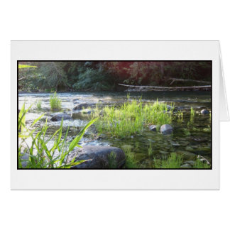 Morning Light on the Cowichan River Card