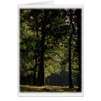 Morning Meadow & Trees Blank Card