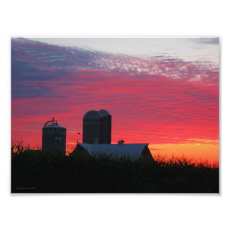 Morning On The Farm Print