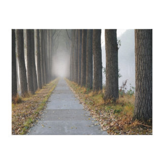 Morning park in the autumn canvas print