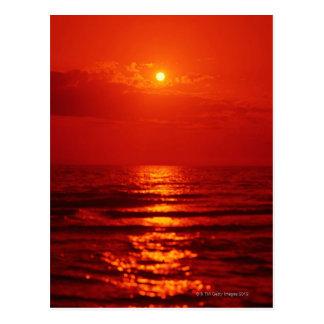 Morning Sun 4 Postcard
