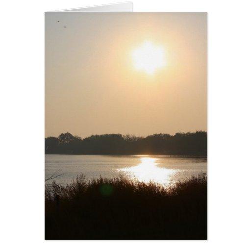 Morning Sun And Haze Greeting Cards