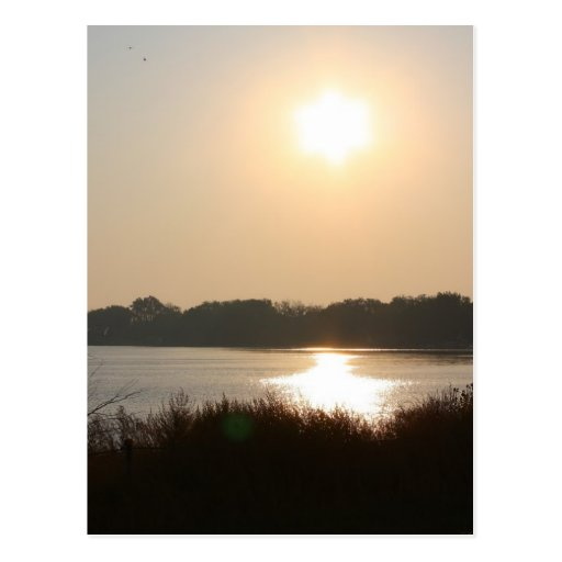 Morning Sun And Haze Post Card