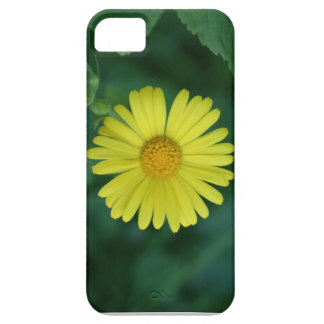 Morning Sun iPhone 5 Covers