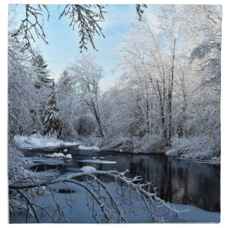 Morning Sun on Snow Covered Sheepscot River Napkin