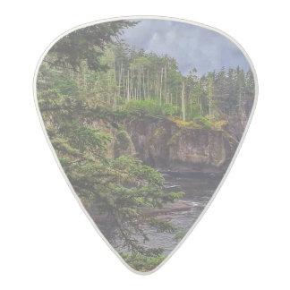 morning sunrise olympic peninsula Cape Flattery Acetal Guitar Pick