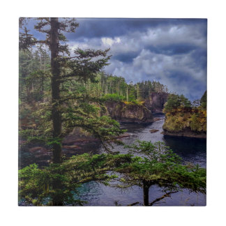 morning sunrise olympic peninsula Cape Flattery Tile