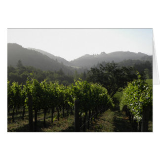 Morning vineyard forest card