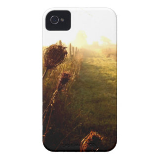 Morning Walk iPhone 4 Cover