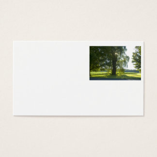 Morning Willow - Start the Day off Bright Business Card
