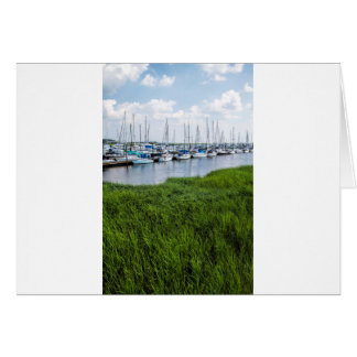 Morningstar Sailboat Marina Georgia USA Grasslands Card