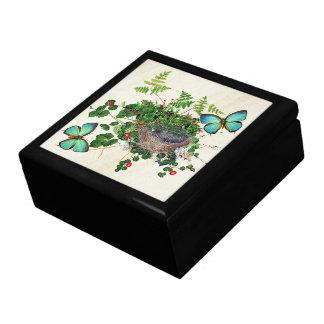 Morpho Butterflies Birds Nest Ferns Vine Gift Box