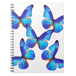 """""""Morpho Butterfly"""" 優良製品 スプリングノート"""