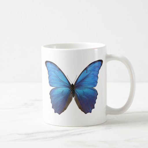 MORPHO DIDIUS D COFFEE MUGS