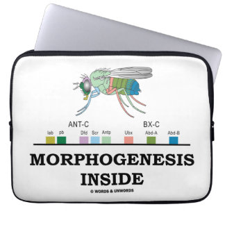 Morphogenesis Inside (Drosophila Homeobox Genes) Laptop Sleeve
