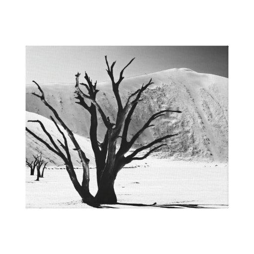 Mort Vlei of Namib landscape desert Impression Sur Toile