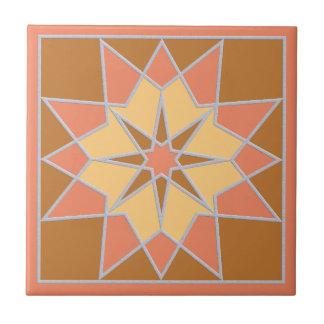 Mosaic pattern ceramic tiles