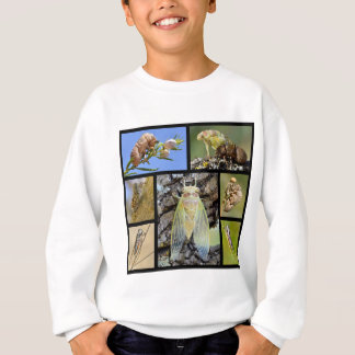Mosaic photos cicadas sweatshirt