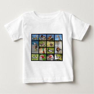 Mosaic photos of ducks baby T-Shirt