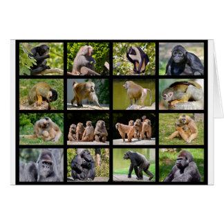 Mosaic photos of monkeys card