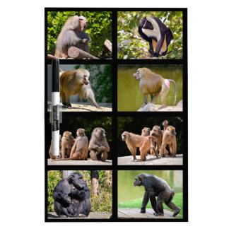 Mosaic photos of monkeys dry erase board