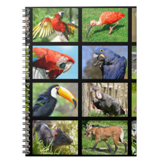mosaic photos South American animals Spiral Notebooks