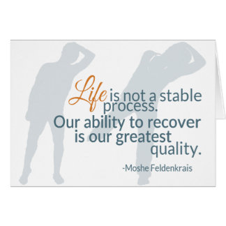Moshe Speaks: Life Not Stable Process 2 Cards