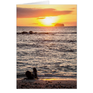 Mosquera Islet Sunset Card