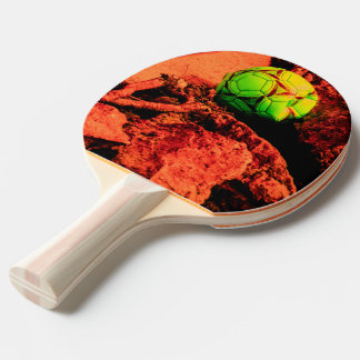 mosquito explorer ping pong paddle