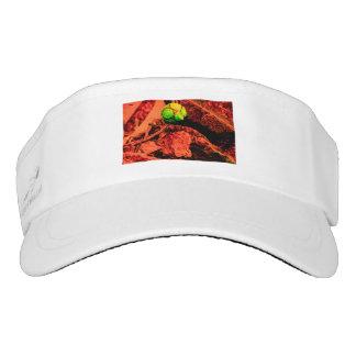 mosquito explorer visor