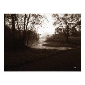 Mosquito Lake State Park (no. 2) Photo Print