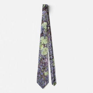 Moss and Lichen covered Wood Boards Tie