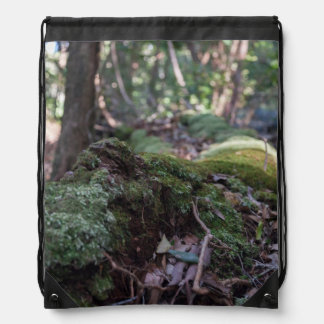 Moss covered fallen tree in a forest backpack