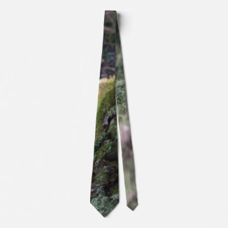 Moss covered fallen tree in a forest tie