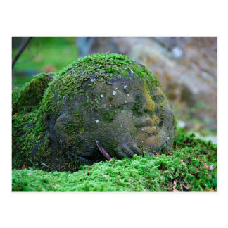 Moss covered Japanese Temple Statue Postcard