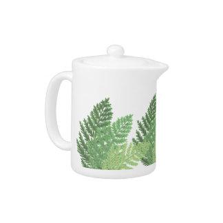 Moss Green Ferns
