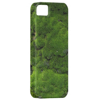 Moss Green iPhone 5 Covers