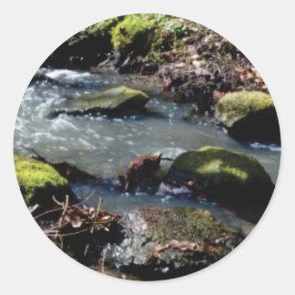 moss in the creek classic round sticker