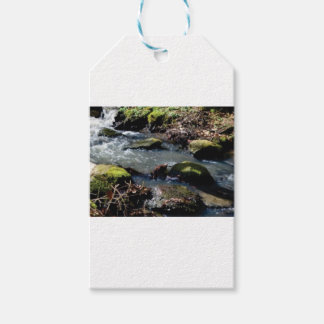 moss in the creek gift tags