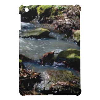 moss in the creek iPad mini case